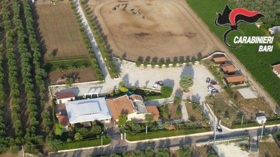 Andria, sequestro da 1,5 milioni: sigilli a ippodromi e giardini esotici