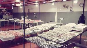 Messina, sotto sequestro azienda di lavorazione e commercio del pesce