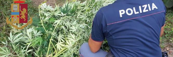 Siracusa, 61enne ai domiciliari per un anno per droga