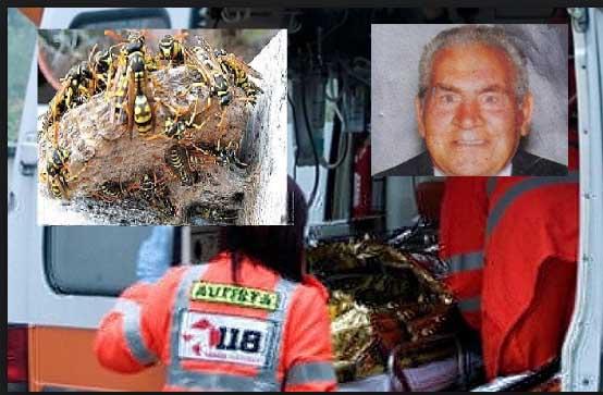 Dolore a rabbia a Floridia per Tanuzzo Tralongo ucciso dalle vespe