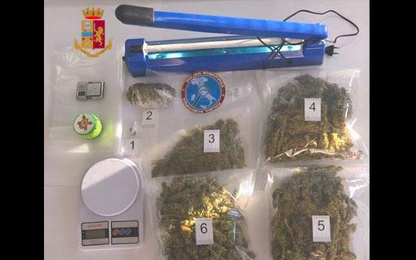 Marijuana e hashish in casa, un arresto a Catanzaro