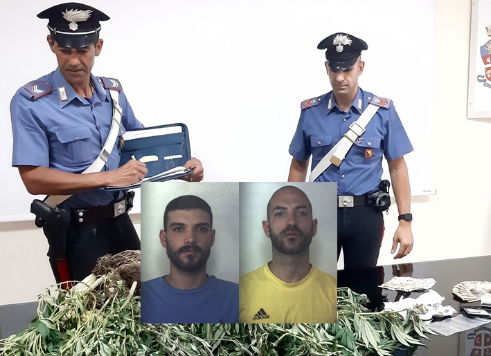 Sequestrate 10 piante di marijuana, arrestati due fratelli a Siracusa