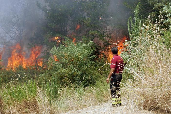 Incendi in Calabria, il prefetto di Reggio Calabria fa intervenire l'Esercito