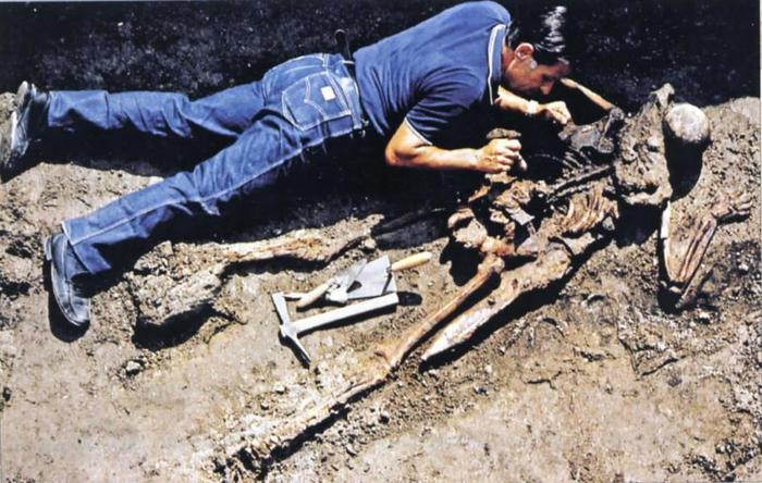 Archeologia, Ercolano riscopre l'ufficiale di Plinio il Vecchio: morì per aiutare