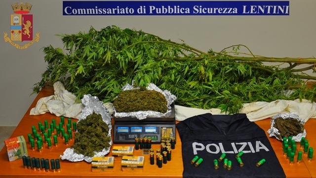 Lentini, scoperte 100 piante di marijuana e sessanta cariche di esplosivo
