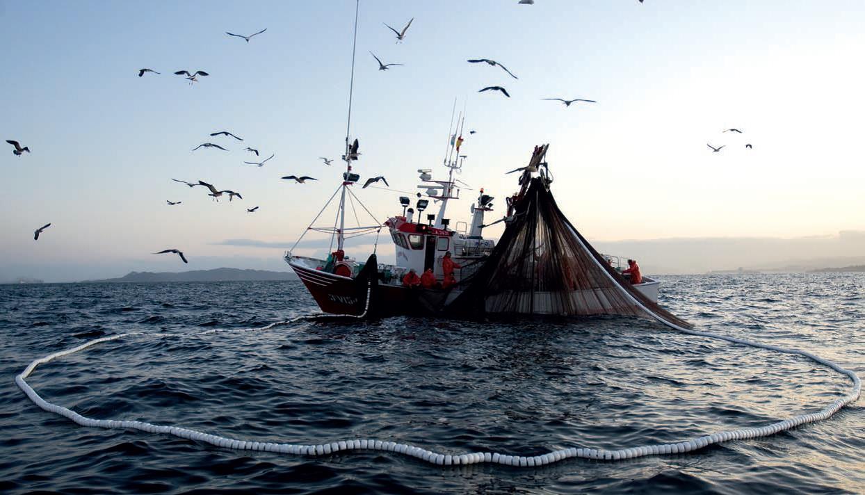 Pesca: 1,6 milioni per investimenti e 'crescita blu' in Sicilia