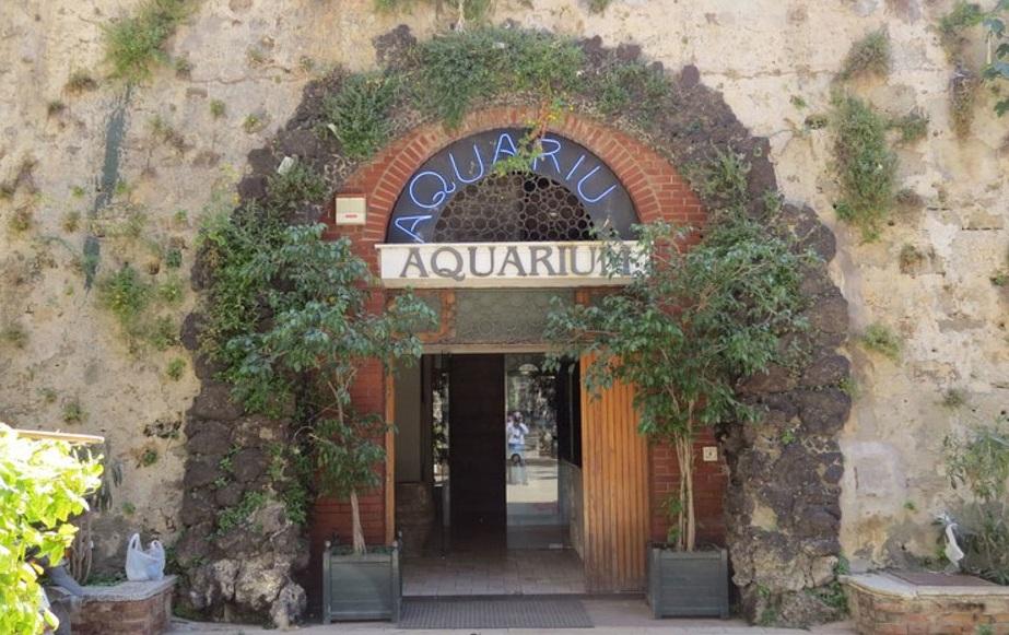 Società di Palermo gestirà per 5 anni l'Acquario di Siracusa