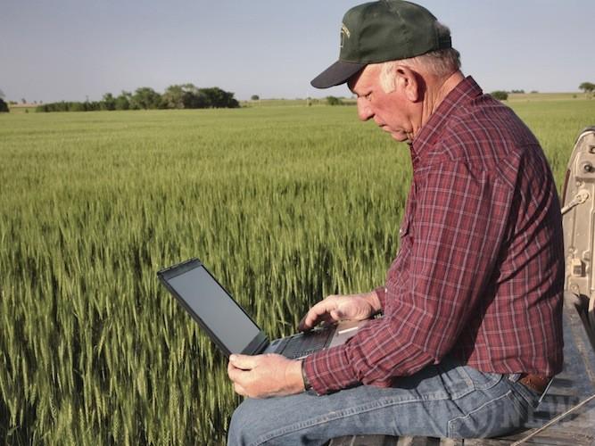 Agricoltura, bando di 4 milioni della Regione per progetti innovativi