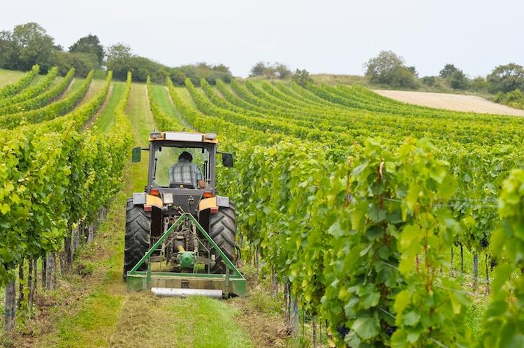 Vittoria, agricoltura: vertice con il sottosegretario Castiglione