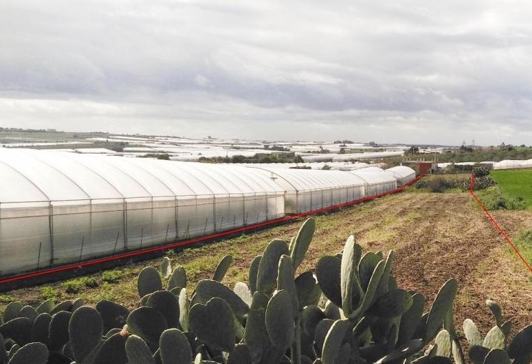Agricoltura, 15 aziende del Sud est per 4 giorni in Spagna