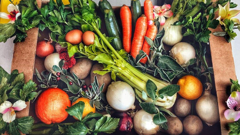 Modica, Istituto di tecnica Superiore: apre specializzazione in agroalimentare