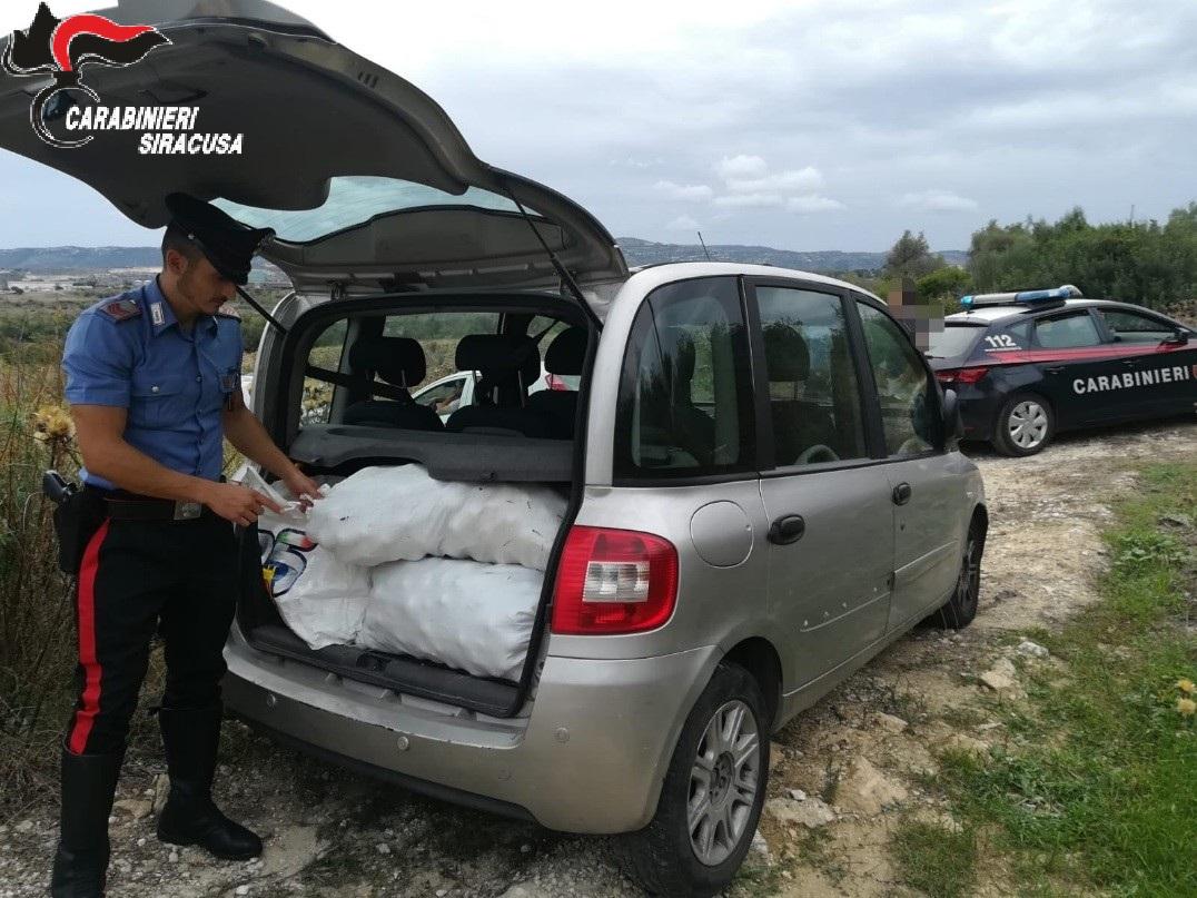 Rubavano agrumi ad Augusta, quattro giovani ladri agli arresti in casa