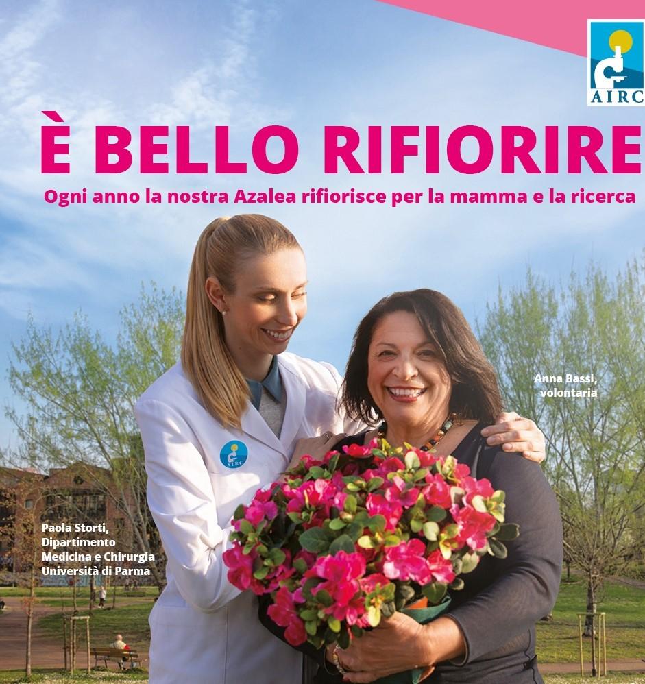 Lotta al cancro: torna nelle piazze siciliane l'Azalea della ricerca Airc