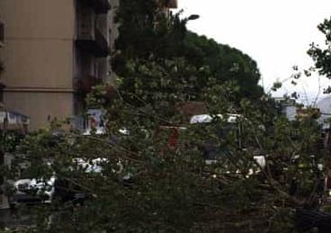 Violento temporale si abbatte su Palermo, allagamenti, auto in panne e alberi caduti