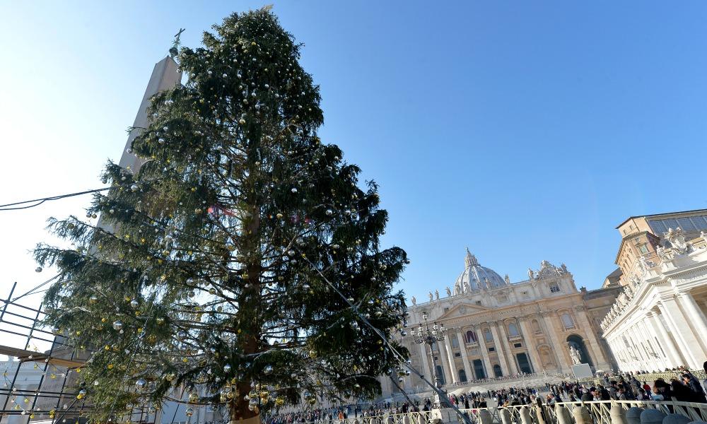 A San Pietro albero di Natale dal Trentino, il presepe sarà donato da Malta
