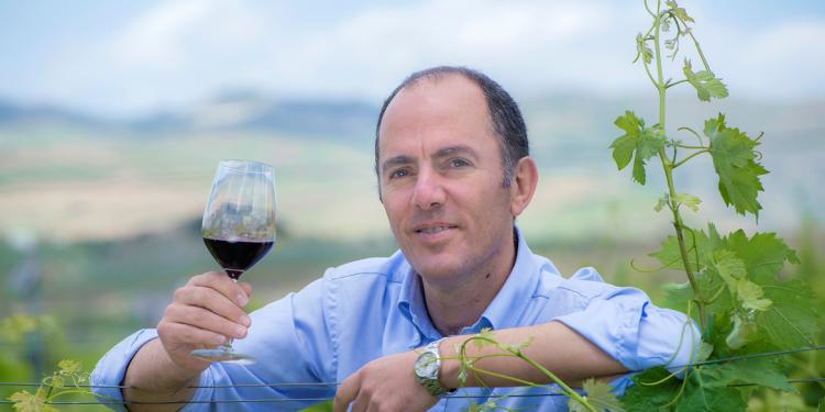 """Vino, Antonio Rallo: """"Raccolto sarà inferiore ma di ottima qualità"""""""