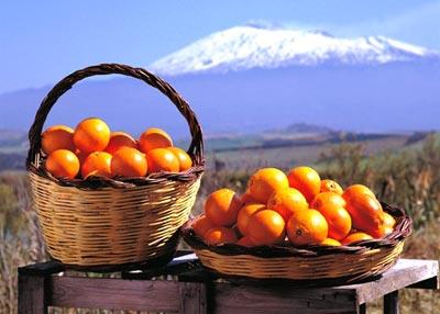 Tumori, arance della Sicilia in tutta Italia per raccolta Airc