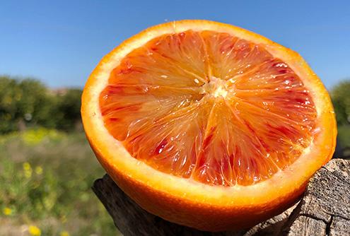 Undici Comuni Siciliani tornano in giallo: 'arancione' solo Francofonte