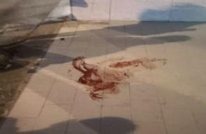 Bimbo di 8 anni precipita dalla finestra di casa a Enna bassa: è grave