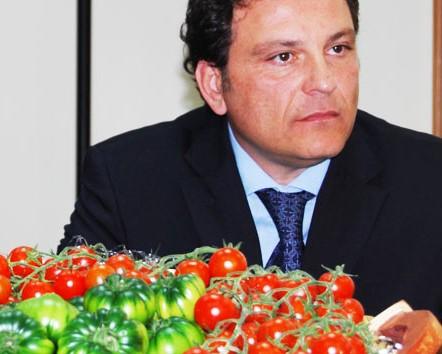 Nasce un nuovo blog sul pomodoro di Pachino