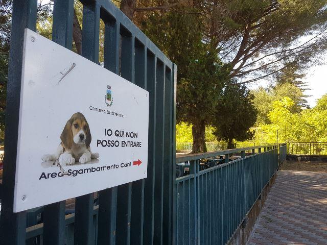 Aggredito perché porta il cane al parco, 3 denunce nel Catanese