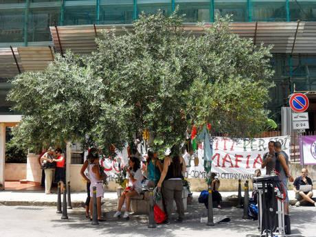 Borsellino: via d'Amelio colorata dai bimbi e dall'ulivo da Betlemme