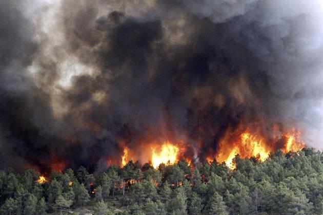 Incendi, Coldiretti: