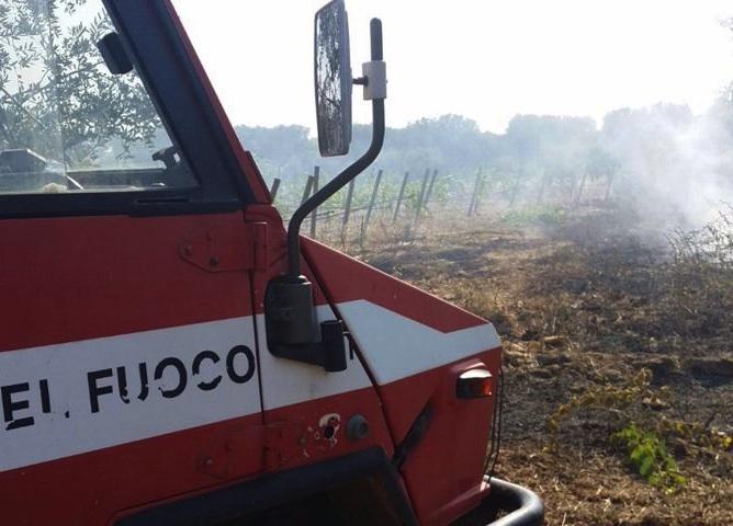 Palermo, volevano appiccare il fuoco nei boschi: due denunciati