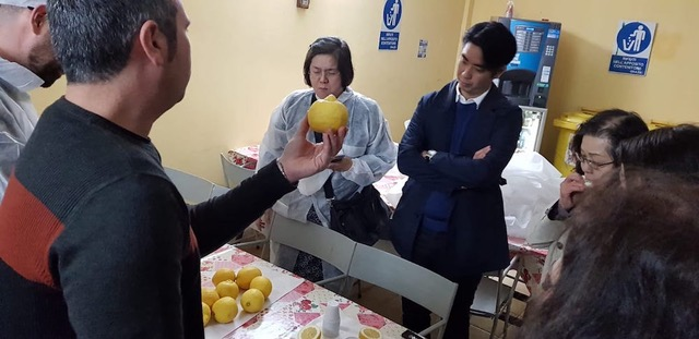 Limone Igp di Siracusa, delegazione giapponese incontra sindaco di Avola
