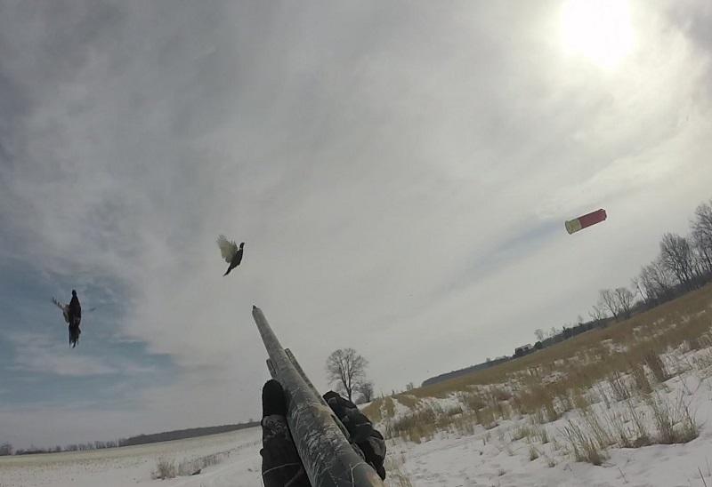 Wwf, sospendere la caccia nei giorni del gelo