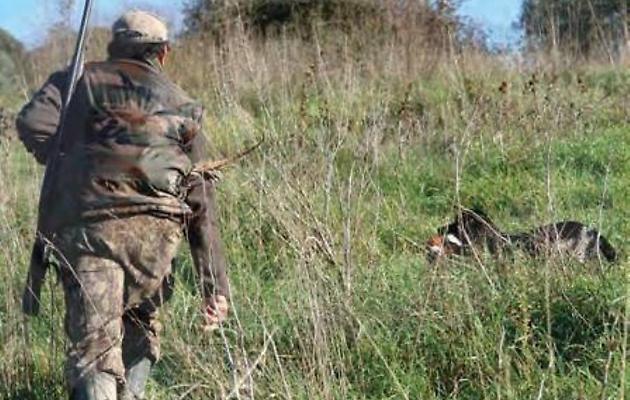 Il Tar Sicilia accoglie ricorso degli ambientalisti: sospesa caccia al coniglio
