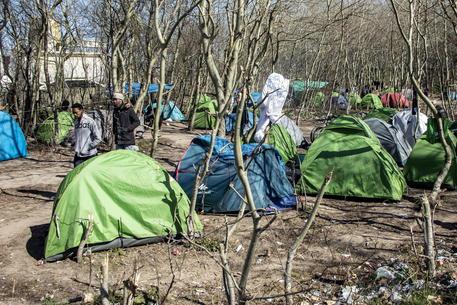 Migranti, maxi sgombero a Calais: evacuati 7-800 persone