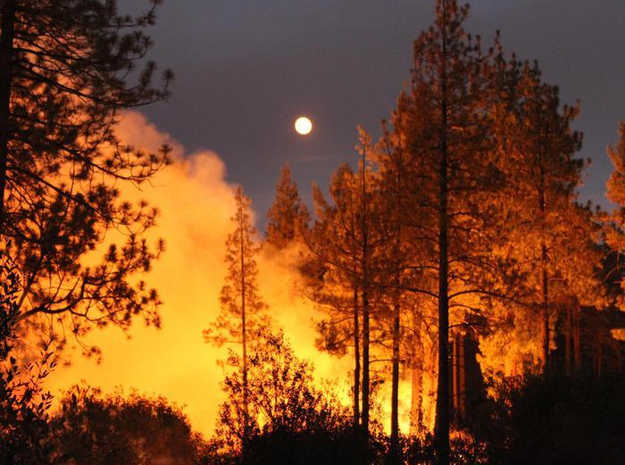 Incendi in California: cinque le vittime