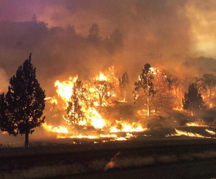 Ondata di caldo eccezionale in Canada: almeno 54 morti
