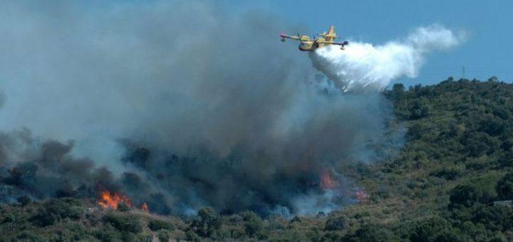 Il fuoco non dà tregua nel Palermitano: canadair anche a Castelbuono