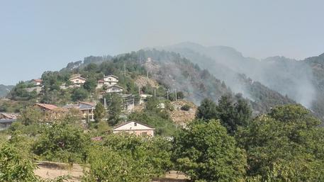 Incendi, Canadair in azione nel Catanzarese: il rogo minacciava le abitazioni