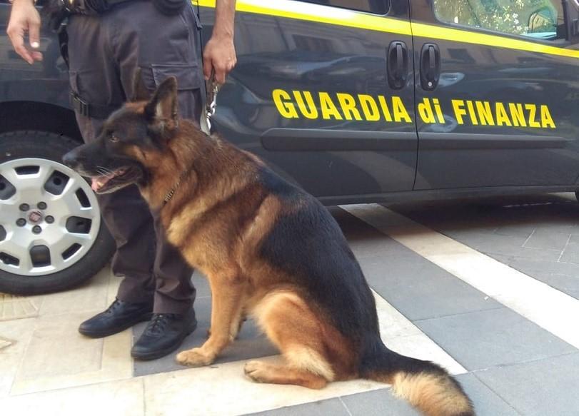 Siracusa, servizio antidroga della Guardia di Finanza: arrestato un pusher