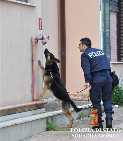 Controlli antidroga nelle scuole di Ragusa, studente trovato con due spinelli