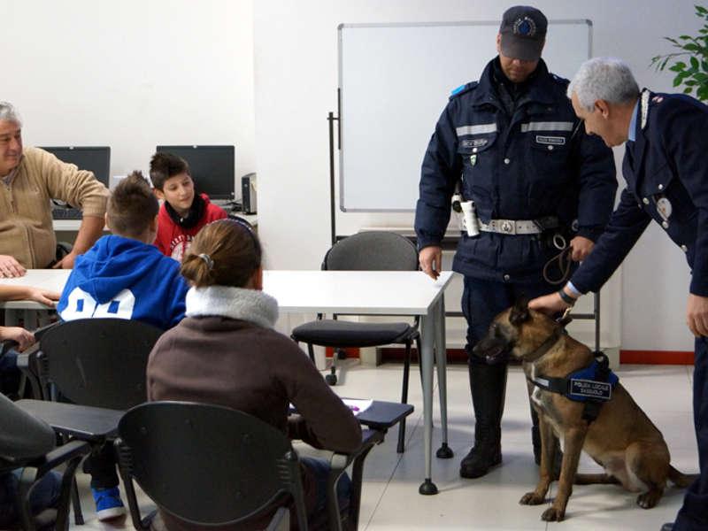 Siracusa, controlli antidroga nelle scuole: sequestrata marijuana