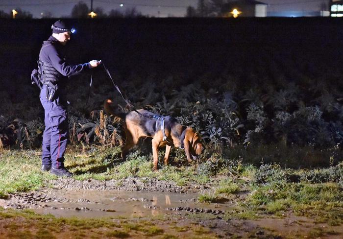 Cani molecolari alla ricerca della sedicenne scomparsa nel Salento