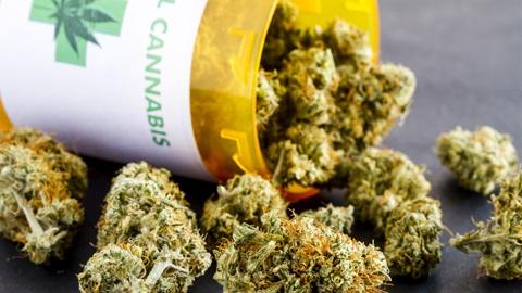 Cannabis terapeutica, farmaco gratis in Sicilia: Razza firma il decreto