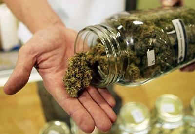 Cannabis uso terapeutico, sì del Consiglio comunale di Palermo