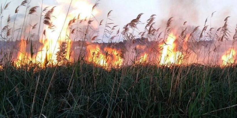 Incendio a Santa Maria del Focallo in un canneto: fuoco pure a Scicli