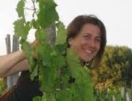 Le storie dei vini dell'Etna e della Sicilia occidentale in una kermesse social