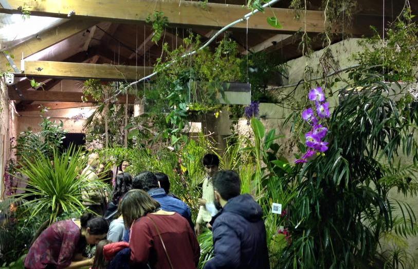 Modica, laboratori didattici per gli studenti in visita alla casa delle farfalle