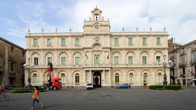 Elezione del nuovo rettore a Catania, esposto del Codacons in Procura