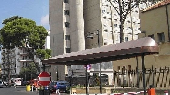 Palermo, colpito alla testa da una cavalla durante il parto: morto