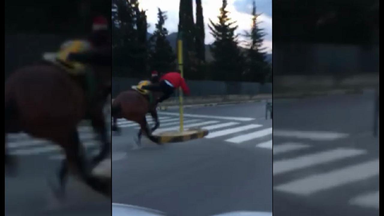 Si era schiantato contro un palo, i Carabinieri individuano il fantino
