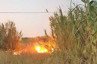 Siracusa, fuoco nella Riserva del Ciane: il canneto finisce in cenere