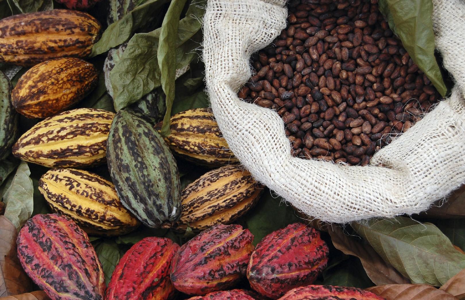 """Modica, tutto pronto per """"Cioccolato in fermento"""": dal 22 al 25 aprile"""